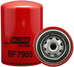 BF7955.jpg