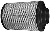 PA2818.jpg